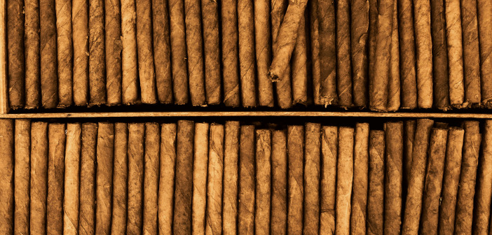 Types of Cigars: What is the Difference Between Them?