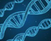 The Hidden Benefits of Having Your Genetics Tested