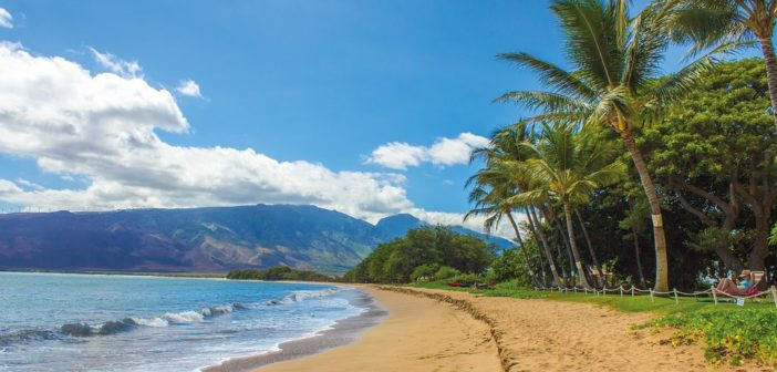 Top 8 Attractions to See In Maui