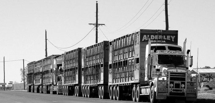 4 Things Everyone Should Know About Freight Factoring